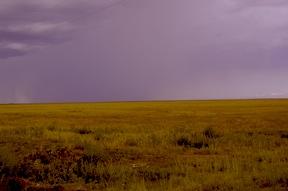 Rain, near Floydada -- sidebar story