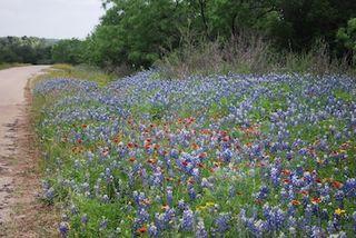 Flowers-mason county