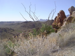 Chisos_from_grapevine